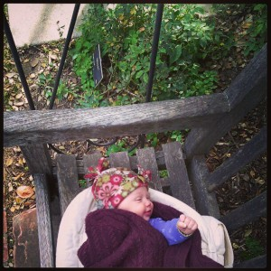 Evelyn at the rose garden