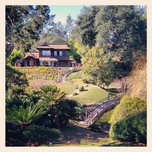 Japanese Gardens at the Huntington