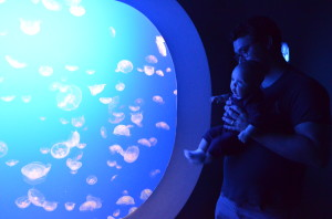 under the sea with Daddy