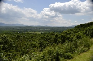 VA landscape