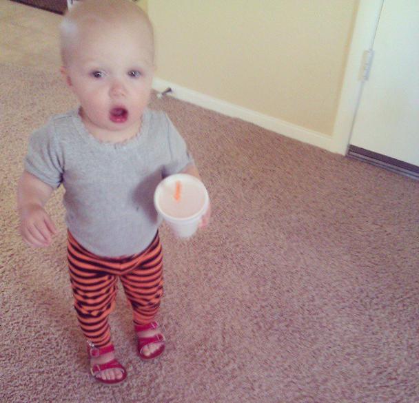pumpkin jamba