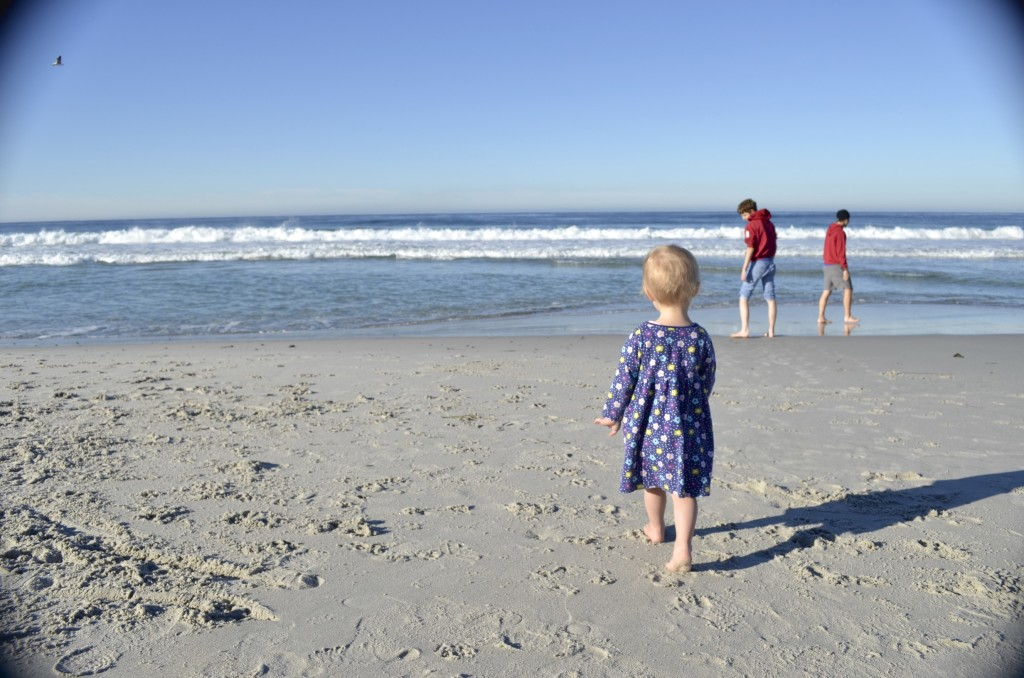 at Carmel beach