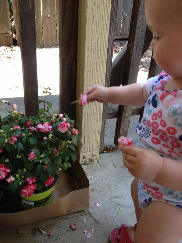 little-garden-helper
