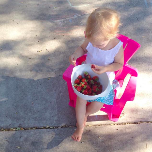 picking-strawberries