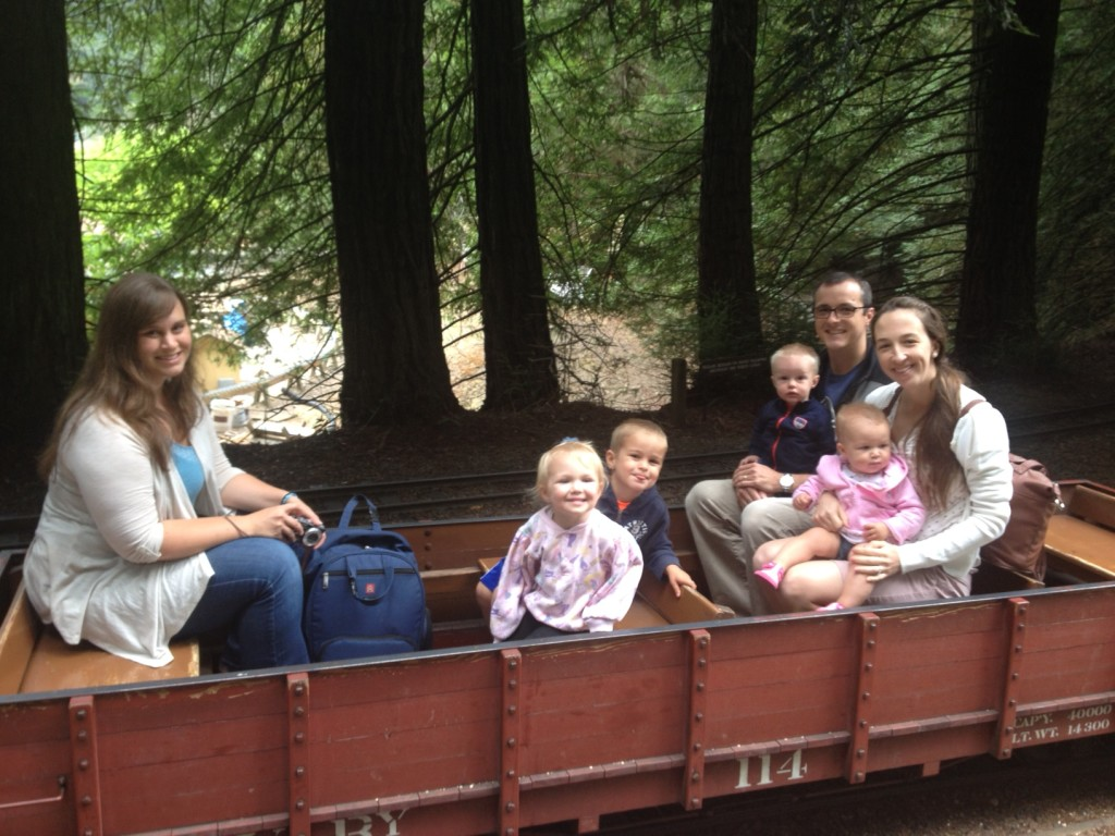 train-at-tilden-park