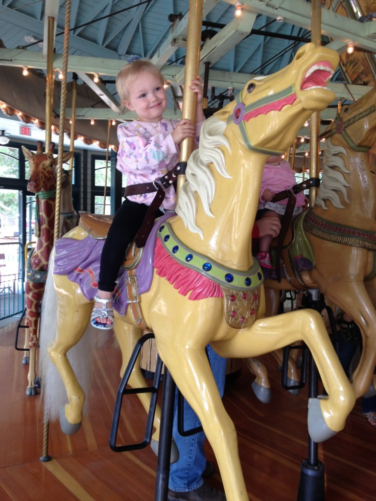 carousel-at-tilden