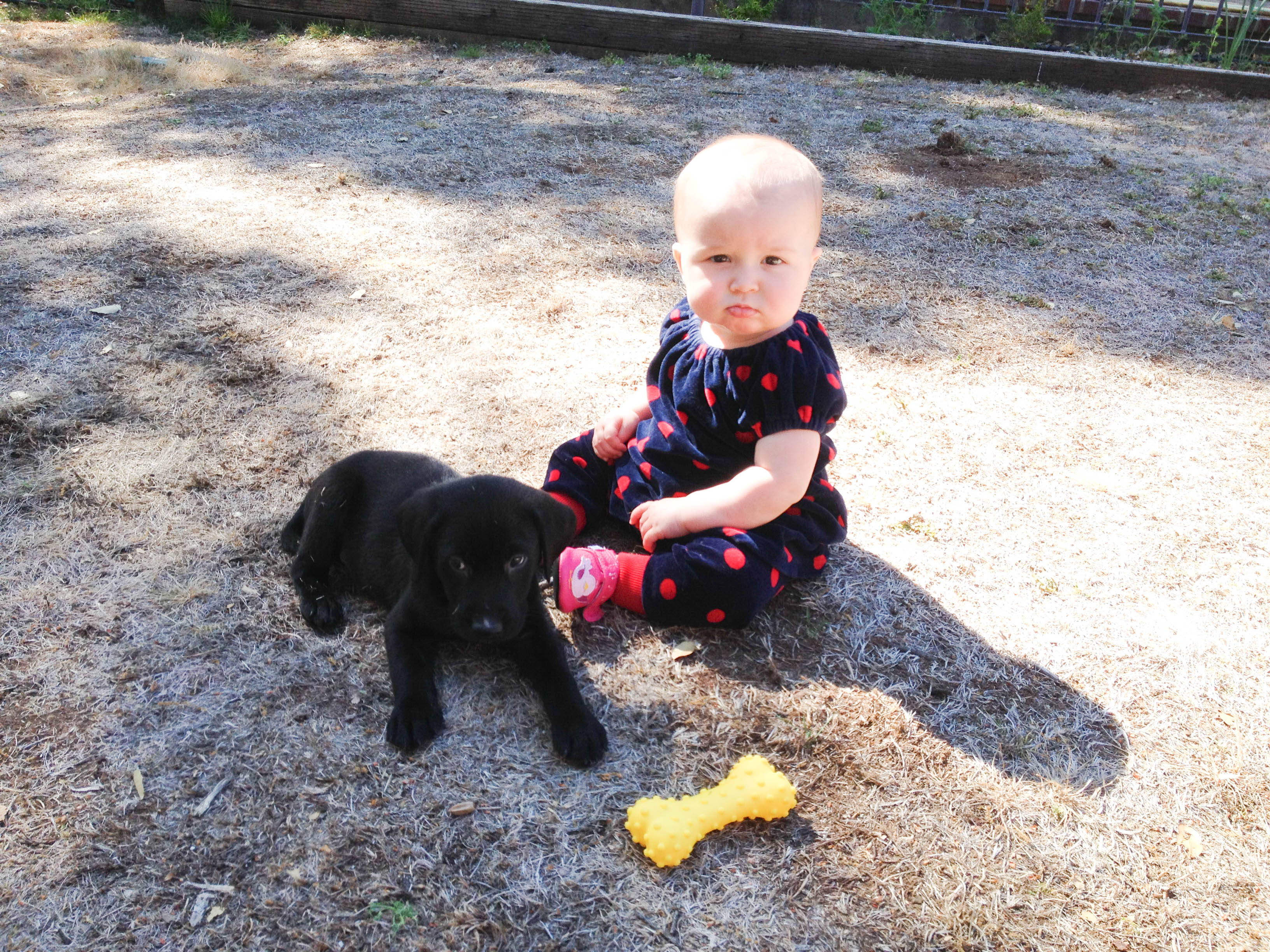Lucie with puppy Jed - March 2015