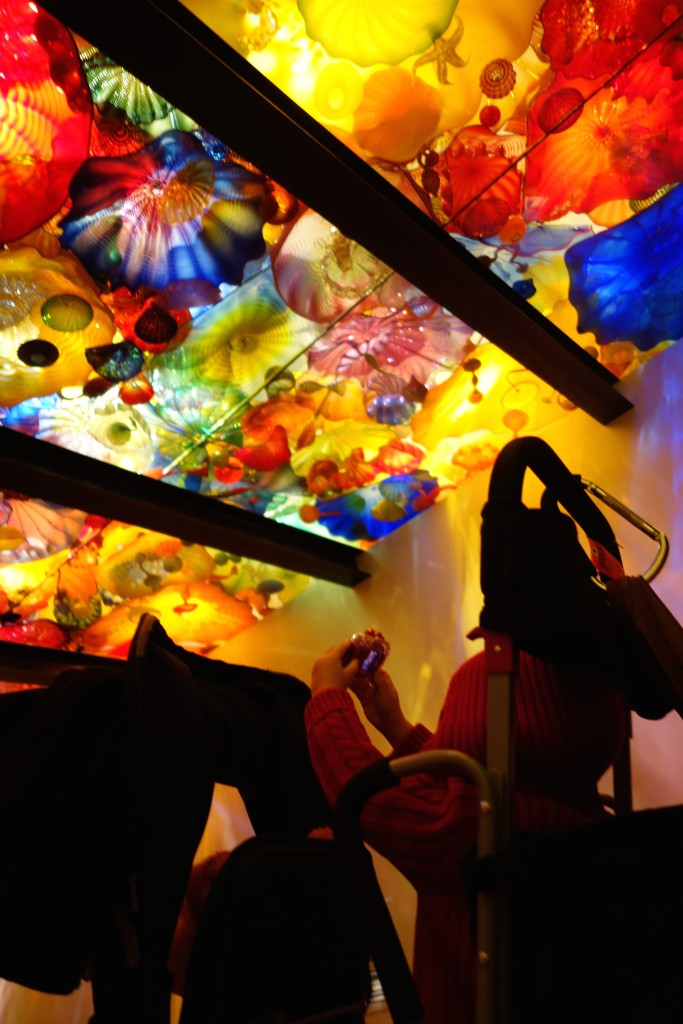 my young photographer chihuly