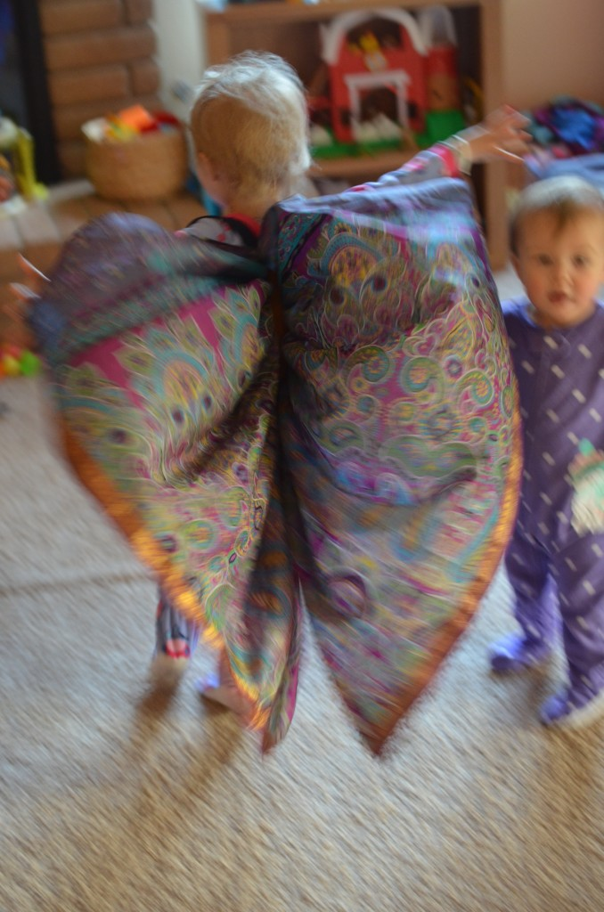 Evey butterfly wings