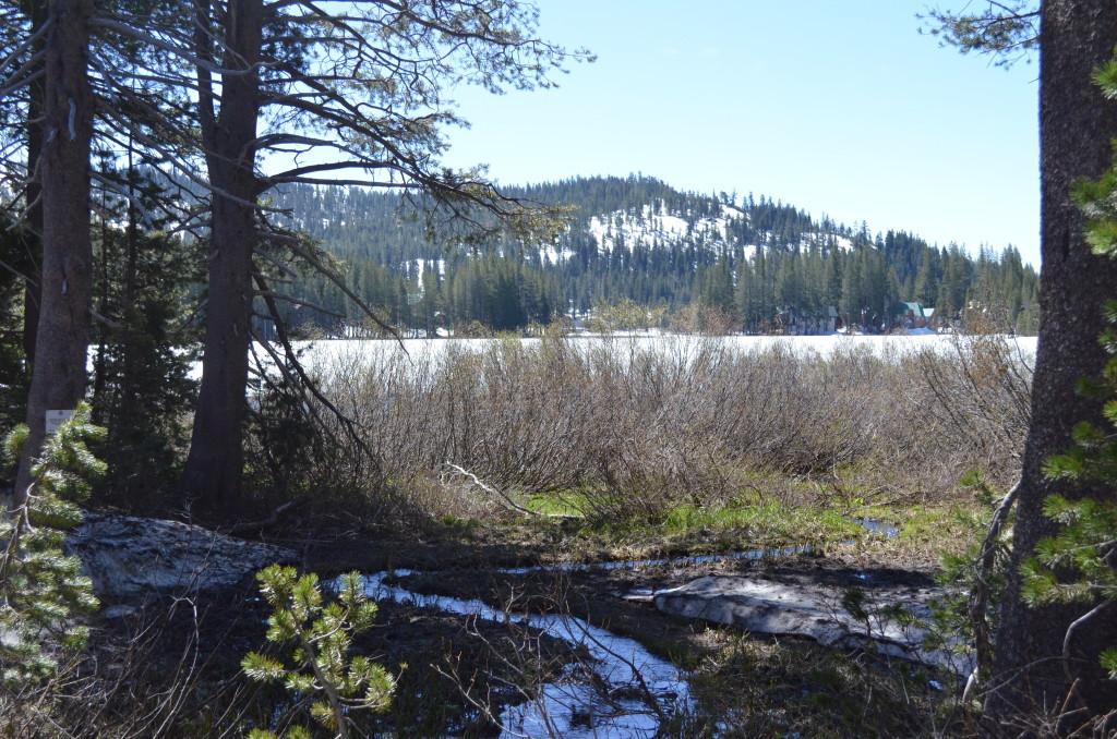 Serene Lakes - May 2016