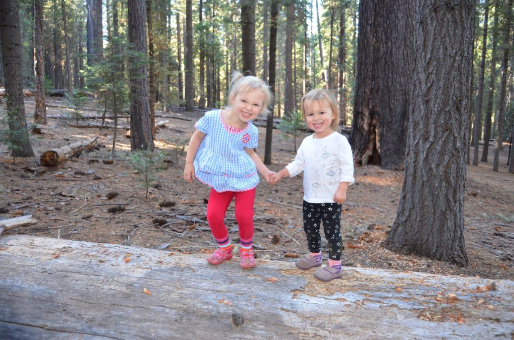 calaveras big trees camping
