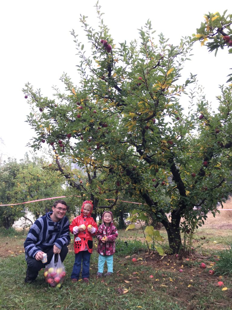 picking apples with daddy