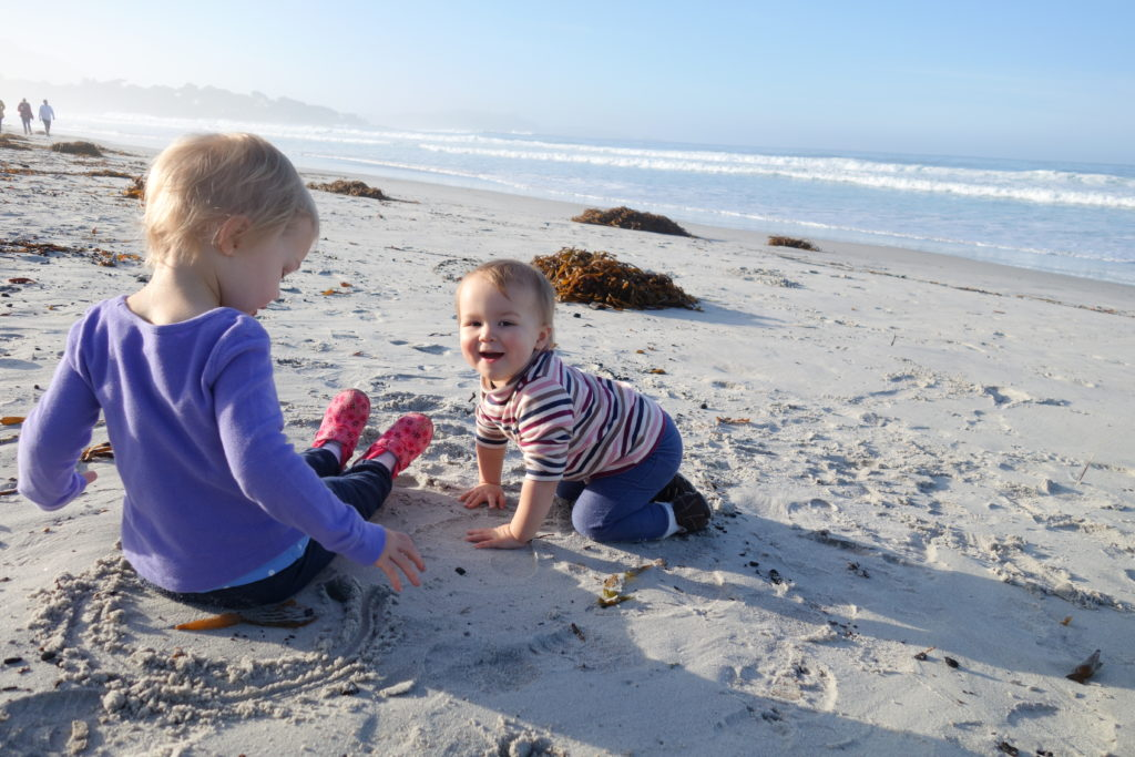 Carmel beach - Jan 2016