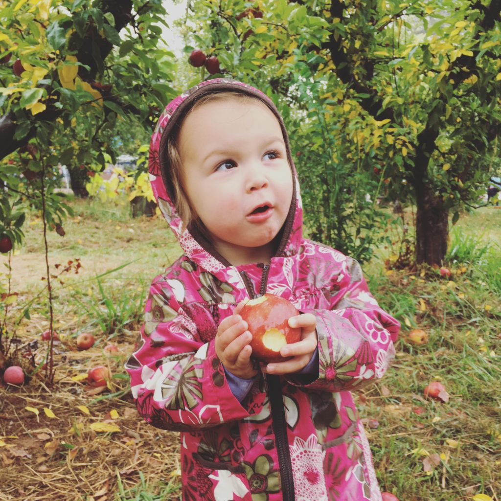 apple picking - Oct 2016